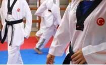 Tekvandoda Başkanlık Kupası'nın altıncı gününde milliler 38 madalya aldı